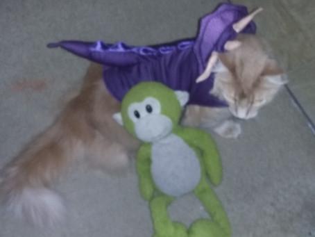 Happy Halloween! ¡Feliz Halloween!
