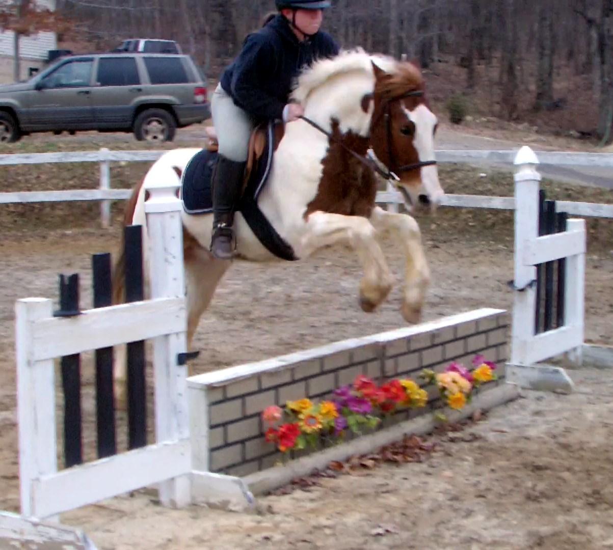 Baxter Jump 4