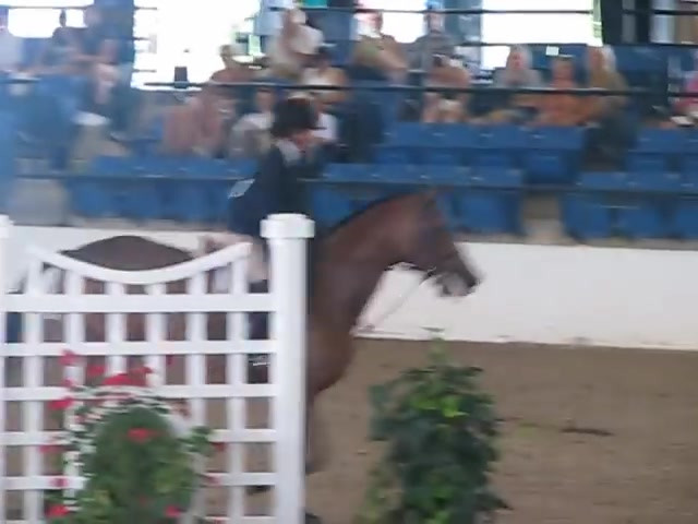 _Cabaret_ USEF Pony Medal Finals 2010.mp4
