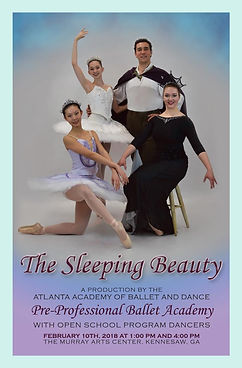 The  Sleeping Beauty Program Cover