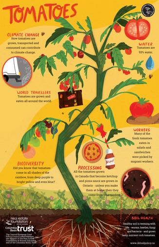 tomatofinalprintfile.png
