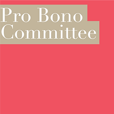 PRO BONO COMMITTEE