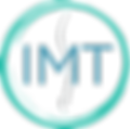 IMT Logo No Title_edited.png