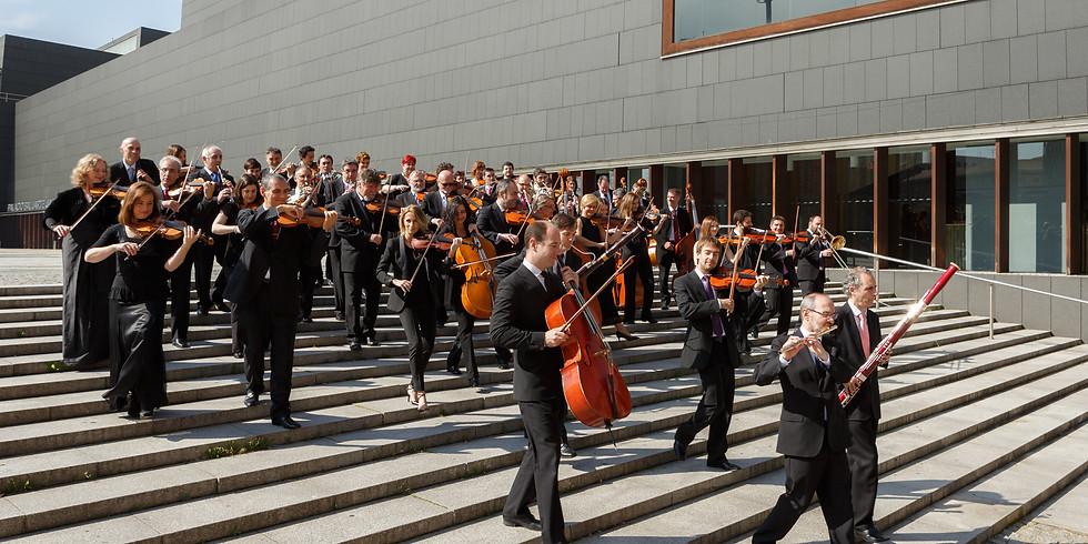 Orquesta Sinfonica de Navarra – Dimensiones sonoras