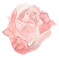 FLOWER_27.png