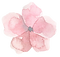 FLOWER_18.png