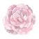 FLOWER_22.png
