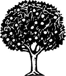 frt_tree.jpg