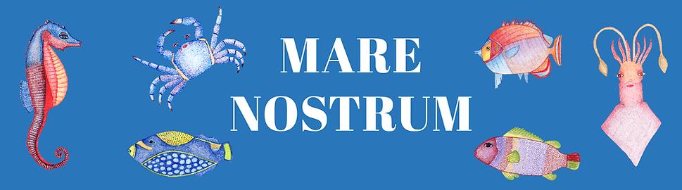 cartela mare nostrum.png