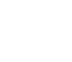 Startup Cup Designs-06.png