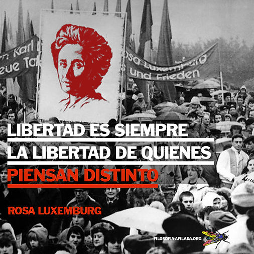 Rosa Lux.jpg