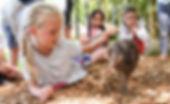 Kiwi at Maunu Primary-1.jpg