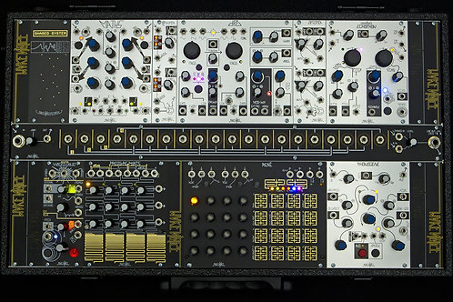 Black & Gold Shared System