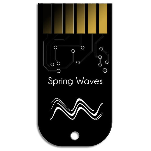 Z-Dsp Card Spring Waves
