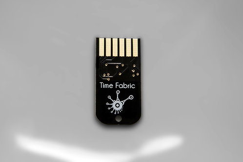 Time Fabric Cartrige For Z-Dsp