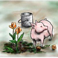 pig-plant-flowers
