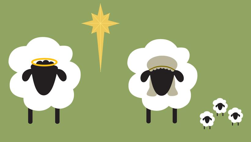 CFK sheep 2.png