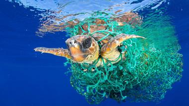 ocean-plastic-pollution.jpg