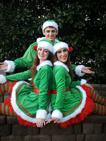 Need an extra hand at Christmas time?  Perhaps a special visit from our elves before the holiday for your children? Our Elves are here to help with your Holiday fun.  We have up to four elves available at a time for your event!
