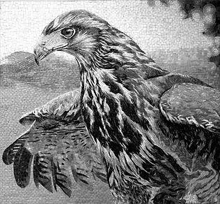 BellaVetro mosaic art falcon interior design patriotic