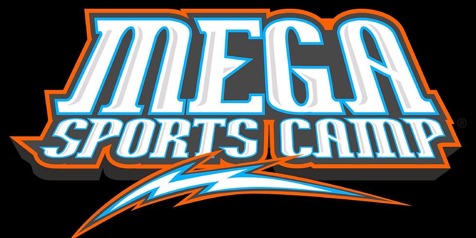 MEGA SPORTS CAMP: ONE DAY