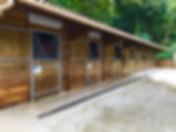 7 nouveau boxs - ECC champlatreux 95270 - ecurie de propriétaire