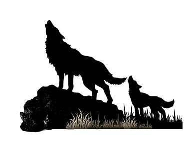 lobo cachorro.1.jpg