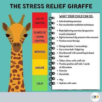 Stress Relief Giraffe.jfif