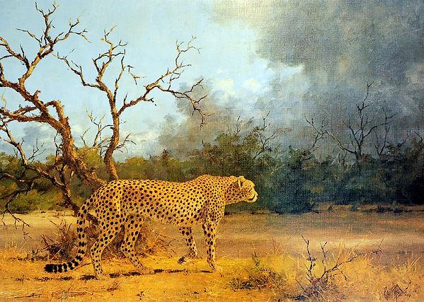 36-Rose_walking_cheetah.JPG