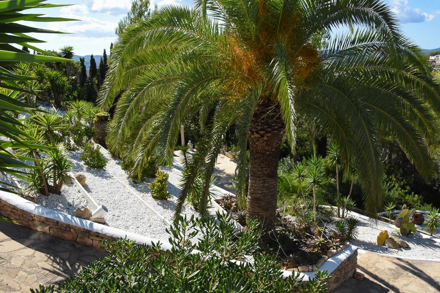 Villa Ibiza 3004 - 9.JPG