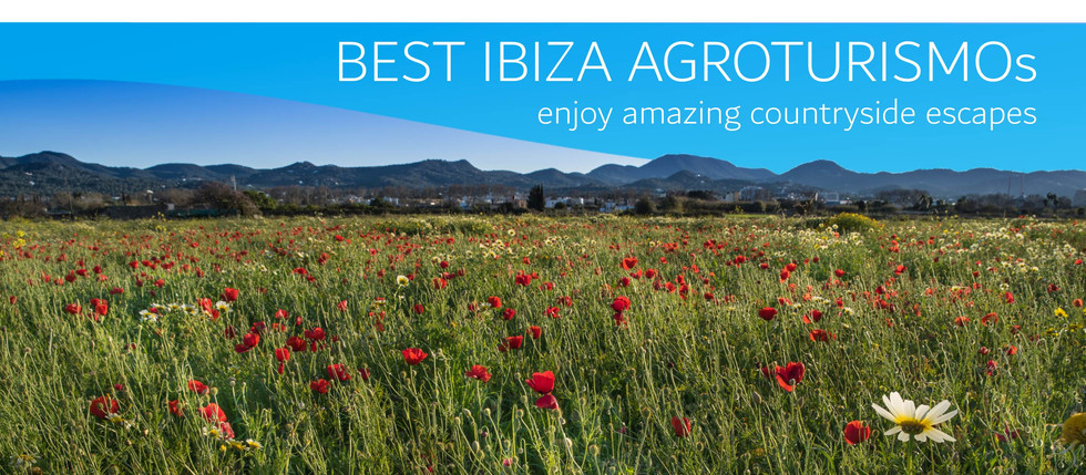 Best Agroturismos In Ibiza - Amazing country escapes