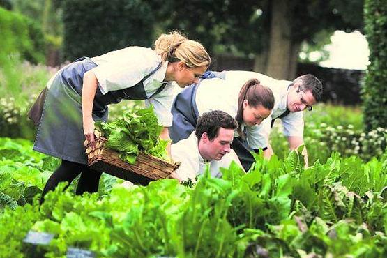 Garden group.jpg