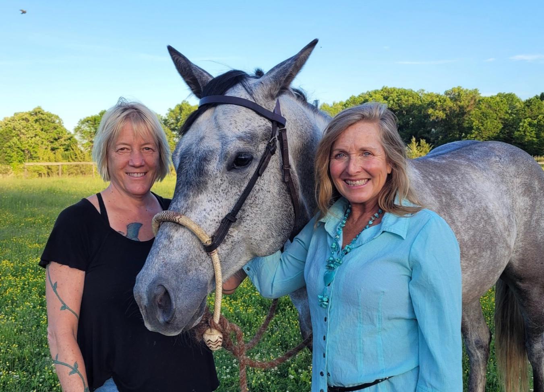 Healing with Horses Weekly Workshop
