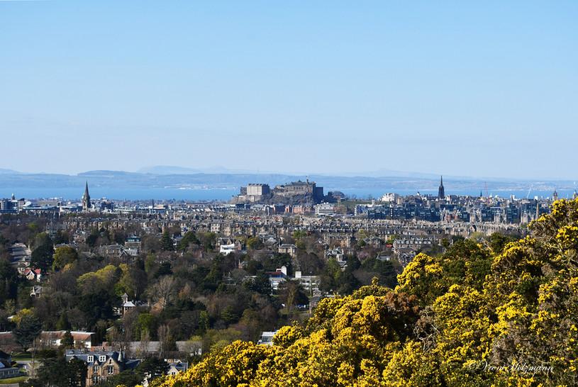 Edinburgh with Gorse