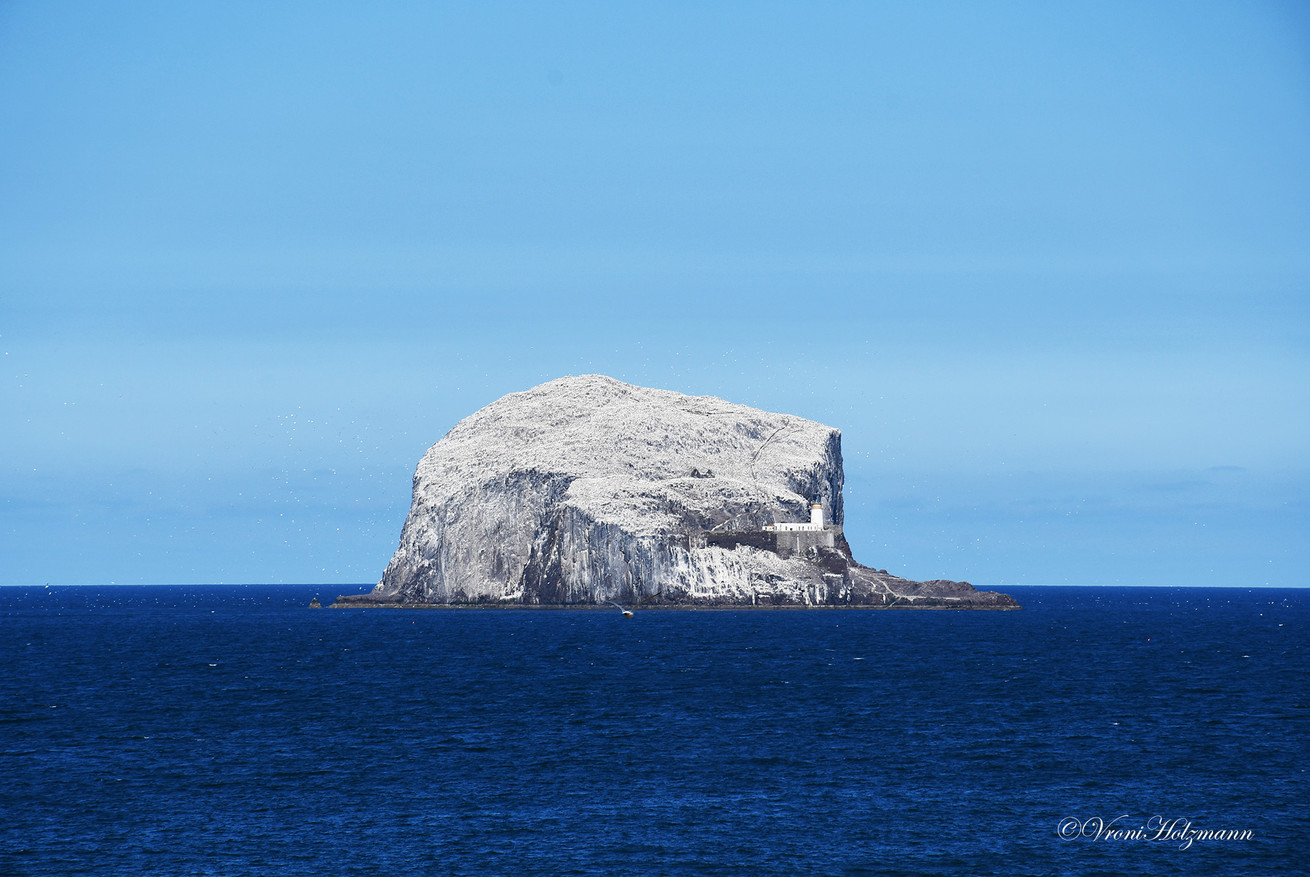 Bass Rock and Deep Blue Sea