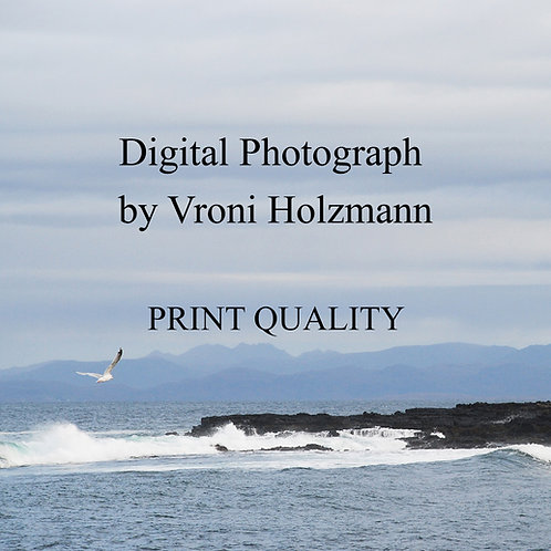 Digital Photograph by Vroni Holzmann - Print Quality