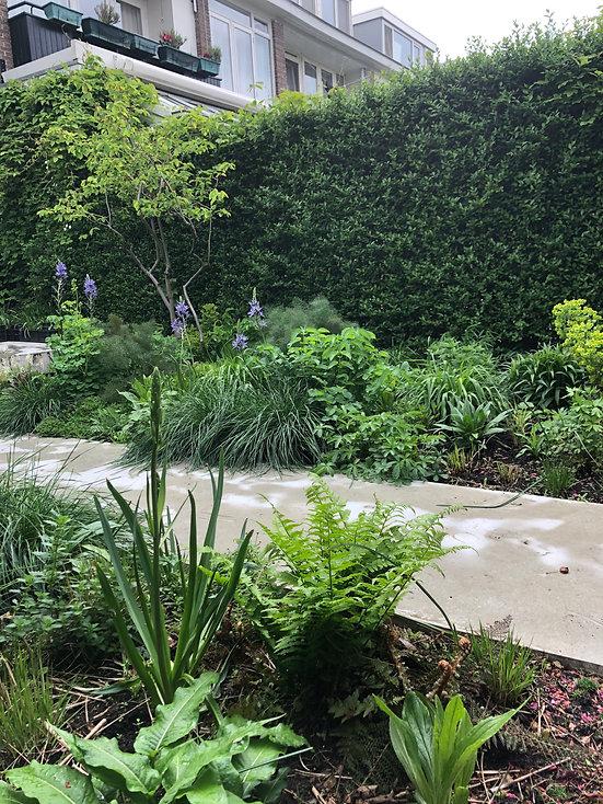 Tuinarchitect Rotterdam, Tuinontwerper Rotterdam, Tuinarchitect Zeeuws Vlaanderen, Tuinarchitect Zeeland, ecologische tuinontwerper, Ecologische tuinarchitect, natuurlijke beplantingsplannen, Insectvriendelijke tuin, kindvriendelijke tuin