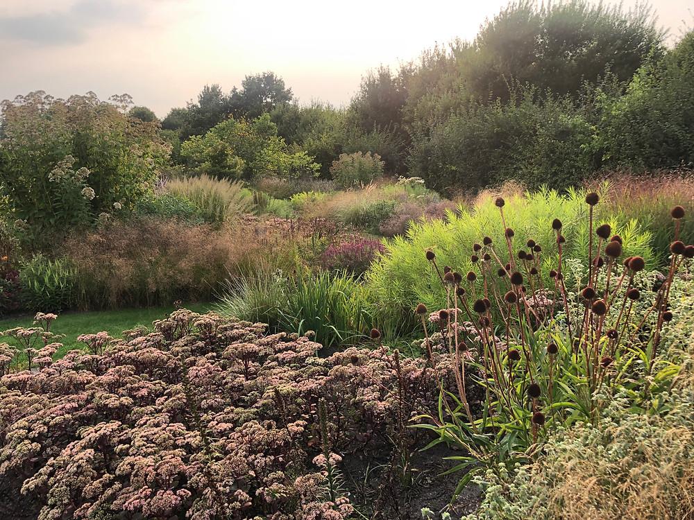 Tuinarchitect regio Rotterdam, tuinarchitect regio Zeeland, studio linda lavoir, ecologische tuinarchitect doet inspiratie op in utrecht bij de vlinderhof