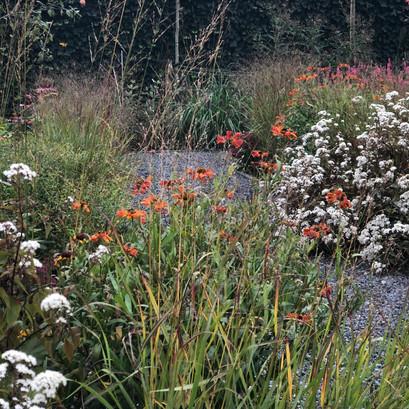 In dit tuinontwerp vormt het beplantingsplan met veel geur, kleur en gezoem het hart van de tuin.