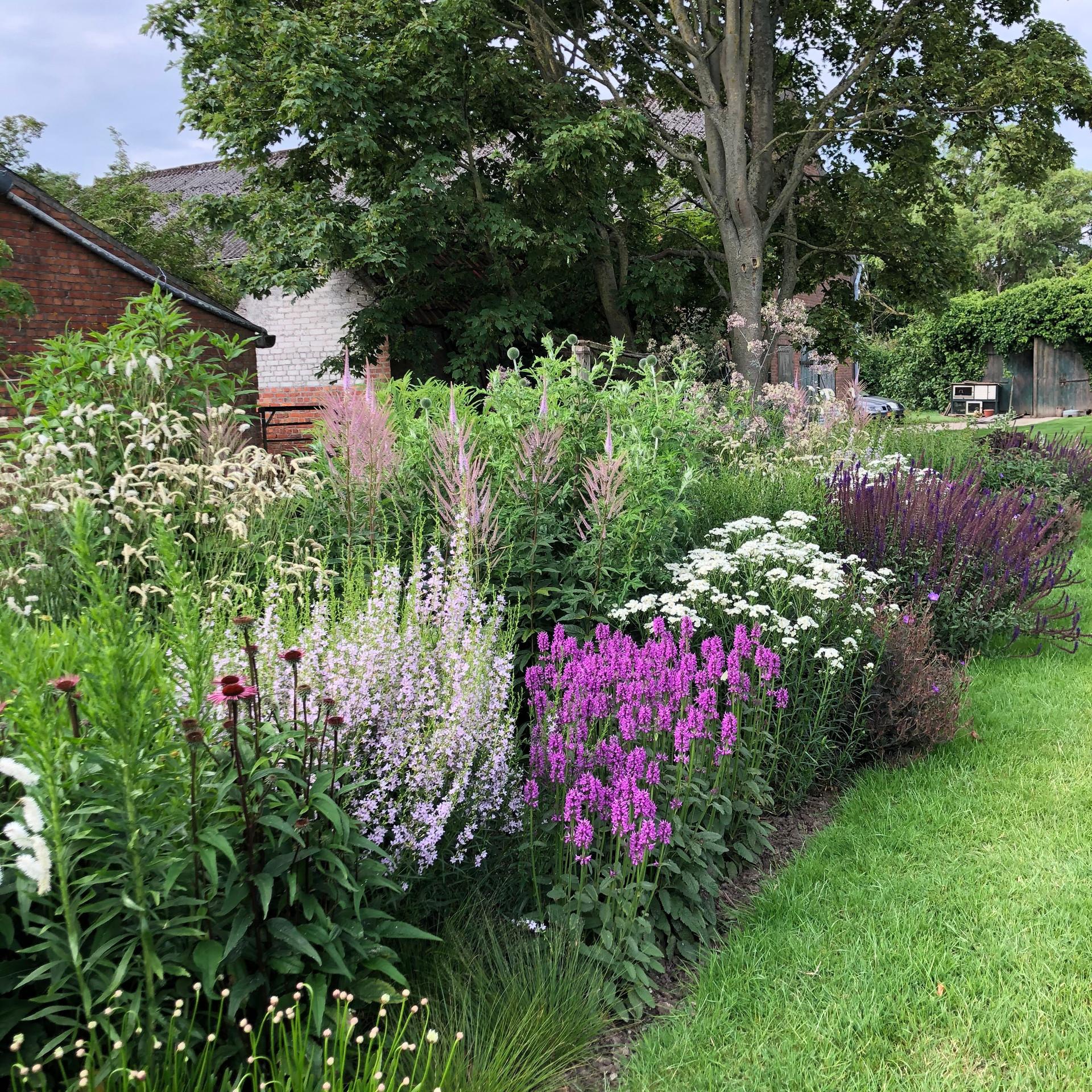De landschappelijke tuin  |   Schoondijke  |  5000 m²