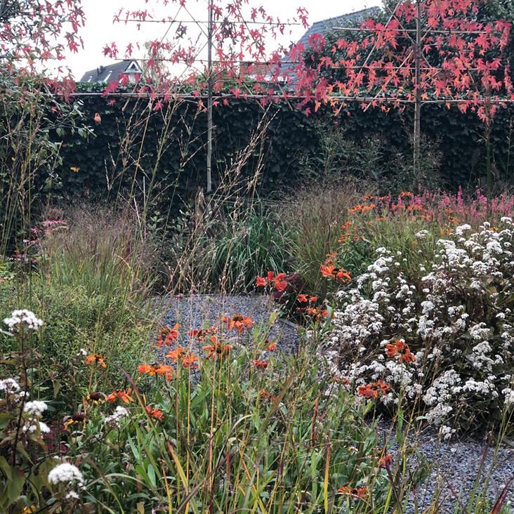 De familie tuin  |  Biervliet  |  250 m²