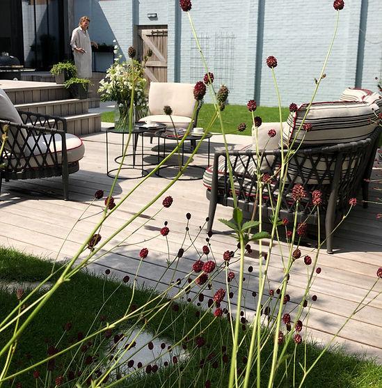 tuinarchitect regio Rotterdam, tuinarchitect regio zeeland, tuinarchitect met plantenkennis, ecologische tuinarchitect, tuinarchitect met een piet oudolf stijl, plantenkennis, beplantingsplannen, vaste planten en siergrassen, de landschappelijke tuin, tuinontwerp in schoondijke, studio linda lavoir, familie tuin, bedrijfstuin, druivenplant, padoek terraserper van Rotterdam,Mooi tuinontwerp, studio linda lavoir, tuinontwerper Rotterdamuinarchitectuur, StudioLinda Lavoir De onderhoudsvriendelijke tuin, maar dan wel de groene versie. Een tuin die niet pietje precies is, maar een groene oase waar niet alleen de eigenaren blij van worden, maar ookhet bodemleven, het hemelwater, de insecten en natuurlijk ook de vogels. natuurlijke tuin architect.