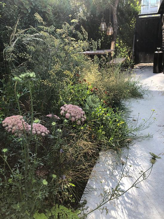 Tuinarchitect Rotterdam, Tuinontwerper Rotterdam, Tuinarchitect Zeeuws Vlaanderen, Tuinarchitect Zeeland, ecologische tuinontwerper, Ecologische tuinarchitect, natuurlijke beplantingsplannen, Insectvriendelijke tuin