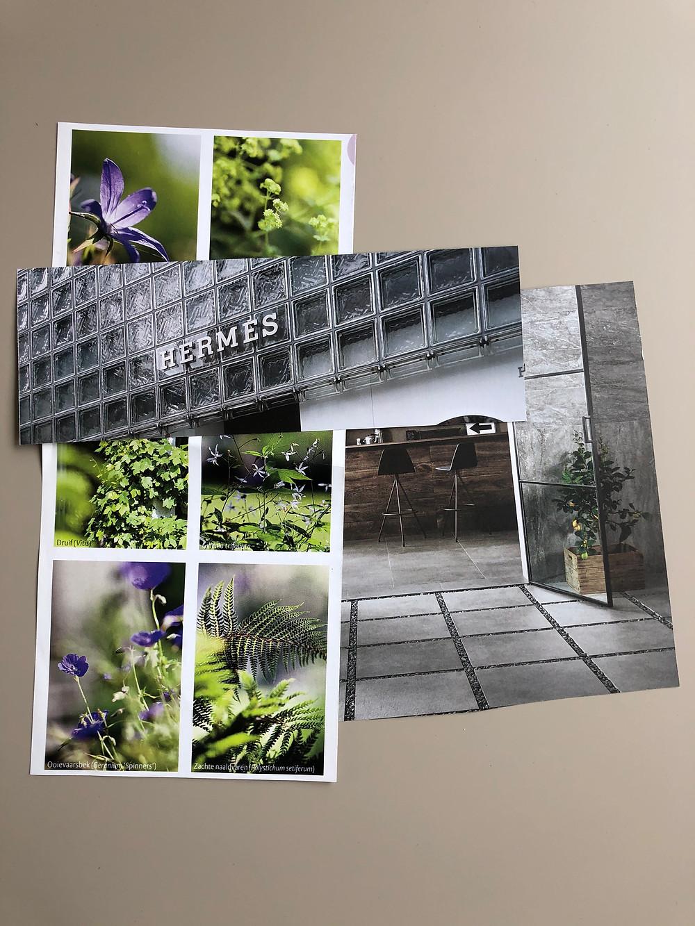 Inspiratie combinatie materialen en beplanting tuinontwerper Studio Linda Lavoir