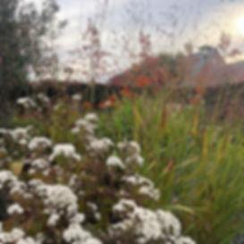 Tuinarchitect Rotterdam,Dit is eentuinwaarde hele familie heerlijk kan genieten van drie seizoenen bloeiende vaste planten en siergrassen. Verschillende terrassen verdeeld over de tuin kijken uit op op de bloemen, vlinders, bijen en vogels die zorgen voor een unieke beleving in de tuin.