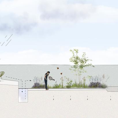 De ontwikkeling van de ecologische tuin