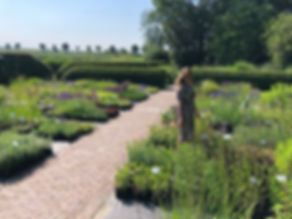 Opendag, insecten, insectentrekkers, bijen, bijentuin,vlinders