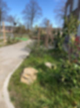 Op het groene schoolplein op basisschool de stelle in terneuzen staat een wilgentunnel gemaakt door tuinarchitect studio linda lavoir in zeeland