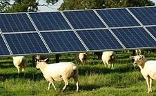 energia solar propriedade rural - Transforme energia solar em Dourados-MS