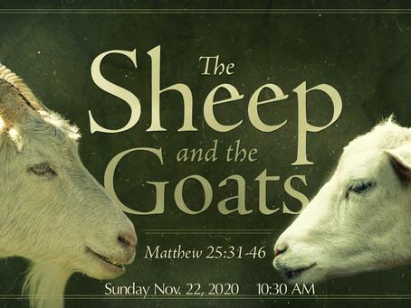 Christ the King Sunday, Nov. 22, 2020